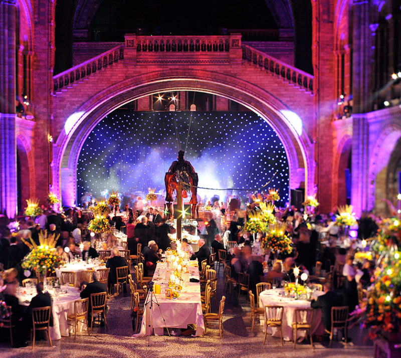 Corporate Summer Party at The Natural History Museum